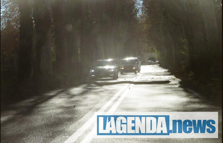 Buttigliera, pericolo sulla strada di Sant'Antonio di Ranverso per la caduta alberi