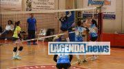Almese Volley