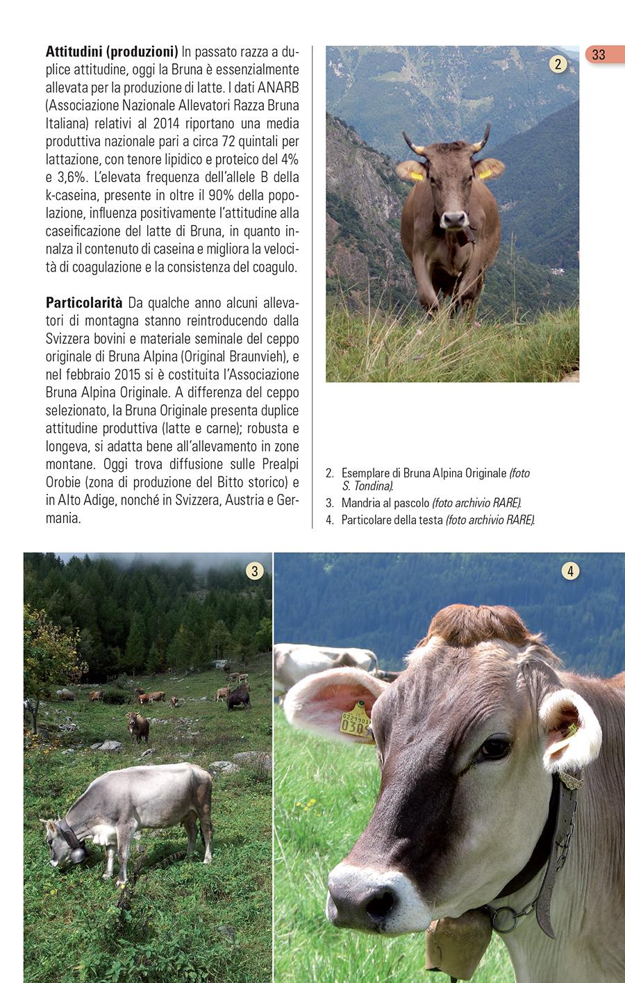 Gli Animali domestici delle Alpi, Blu Edizioni