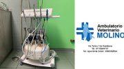 Ambulatorio Veterinario Molino Condove