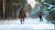 Cavallo neve