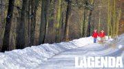 Passeggiata inverno