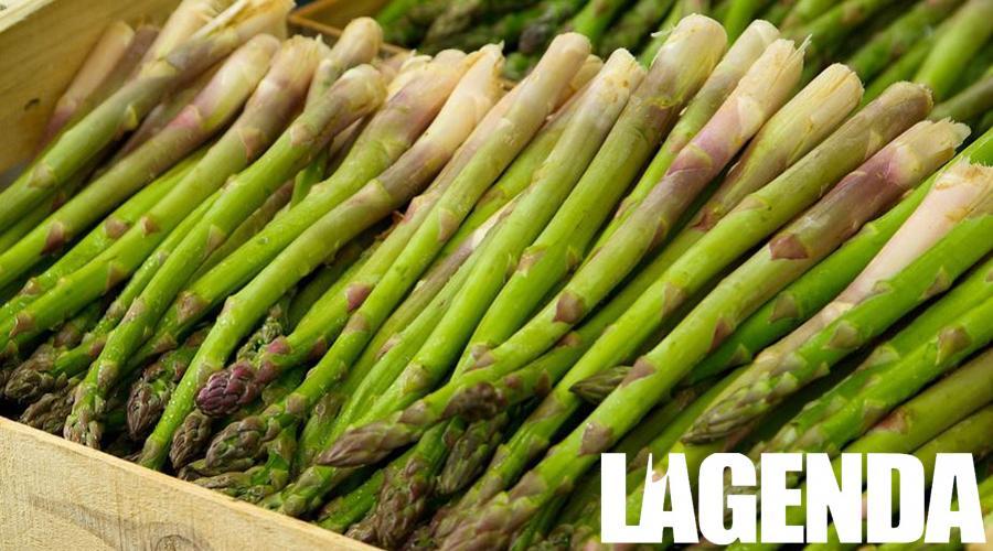 asparago 1